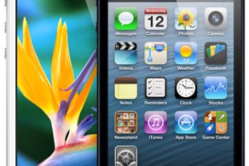 iPhone5DisplayPhoto
