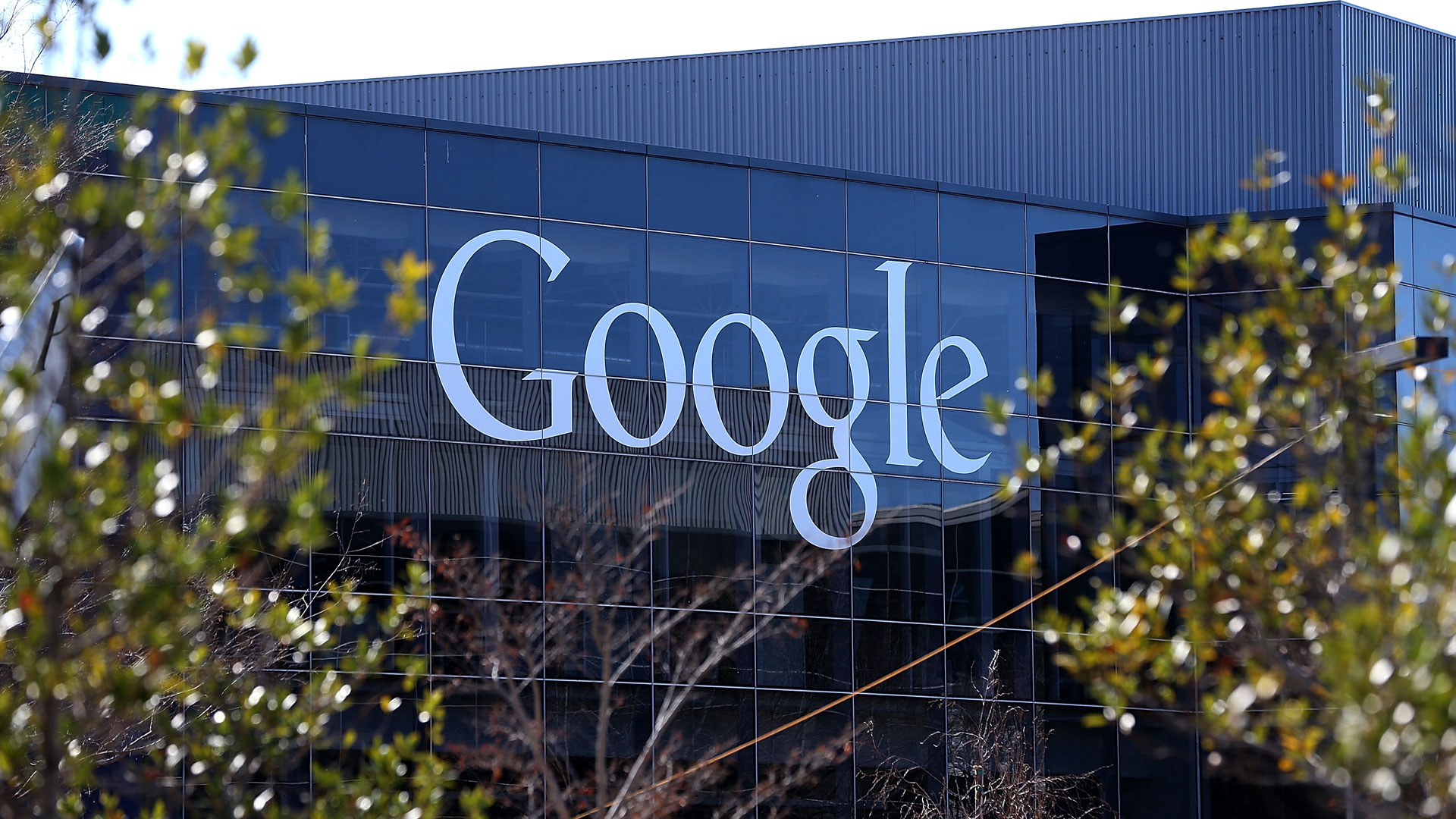 Google Director Chats about Global Campuses for Entrepreneurs