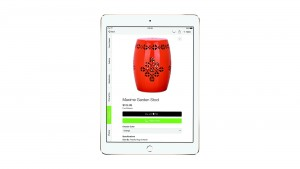 How Apple Pay Revamps the Online Shopping Experience on iPad