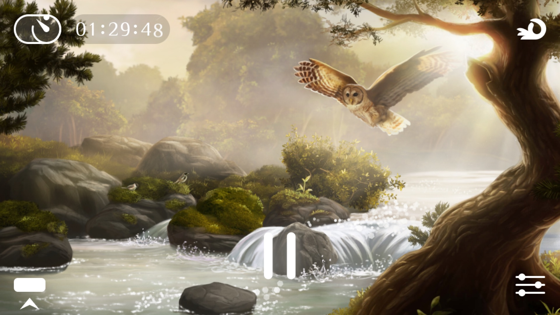 REVIEW: Flowing ~ Meditation & Mindfulness (iOS)