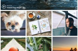 Instagram Enables Live Tile for Windows 10 Desktop App