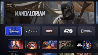 Photo of Disney CEO Bob Iger Shows Off New Streaming Service